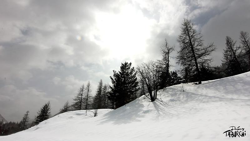 Wonderland sous la neige